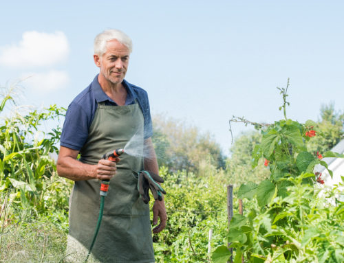 5 Health Benefits of Gardening for Seniors