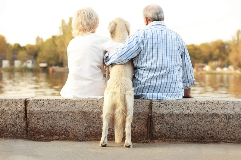 One of the health benefits of pets for seniors is lower blood pressure.