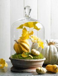 One of our favorite fall activities for seniors is seasonal crafting.