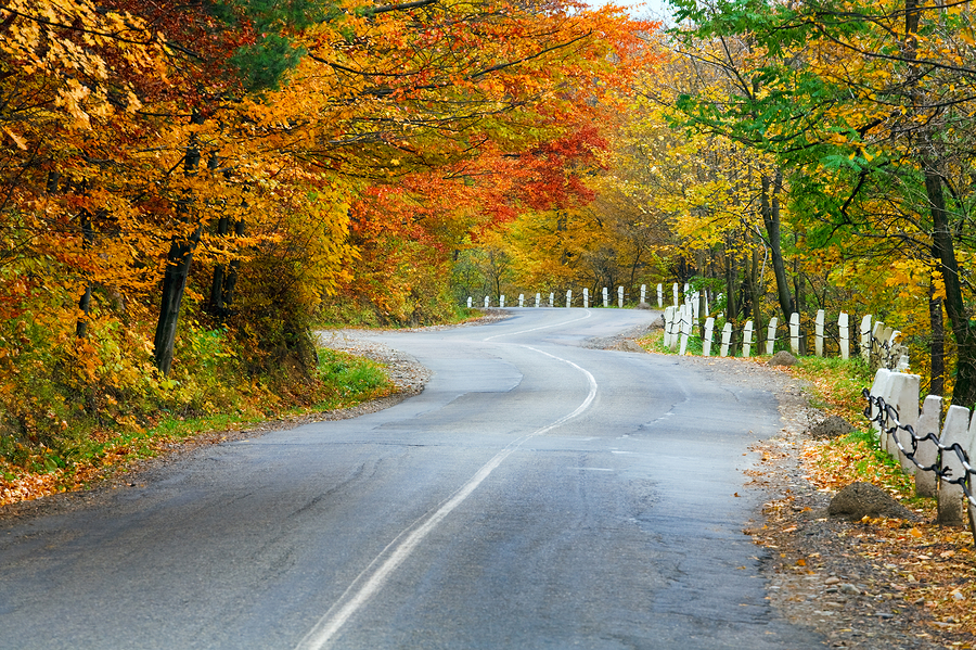 The Arkansas Ozarks is one of the scenic places to travel in fall where you can enjoy foliage and hearing loss-friendly activities.