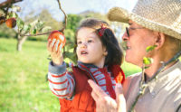One of the fall activities to do with your grandkids is go fruit picking