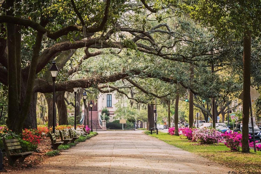 Another one of the warm winter travel destinations for seniors on this list is Savannah, Georgia.
