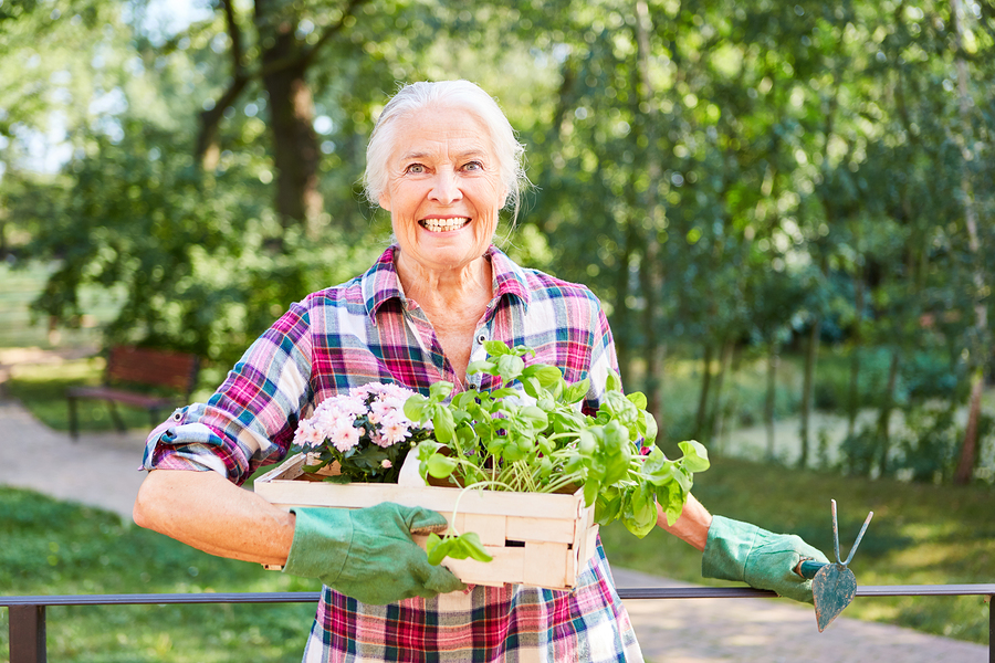 This article contains helpful hints on how to plant an herb garden.