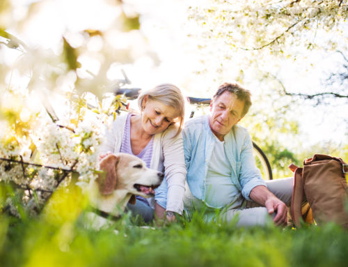 How to Protect Hearing Aids in Spring