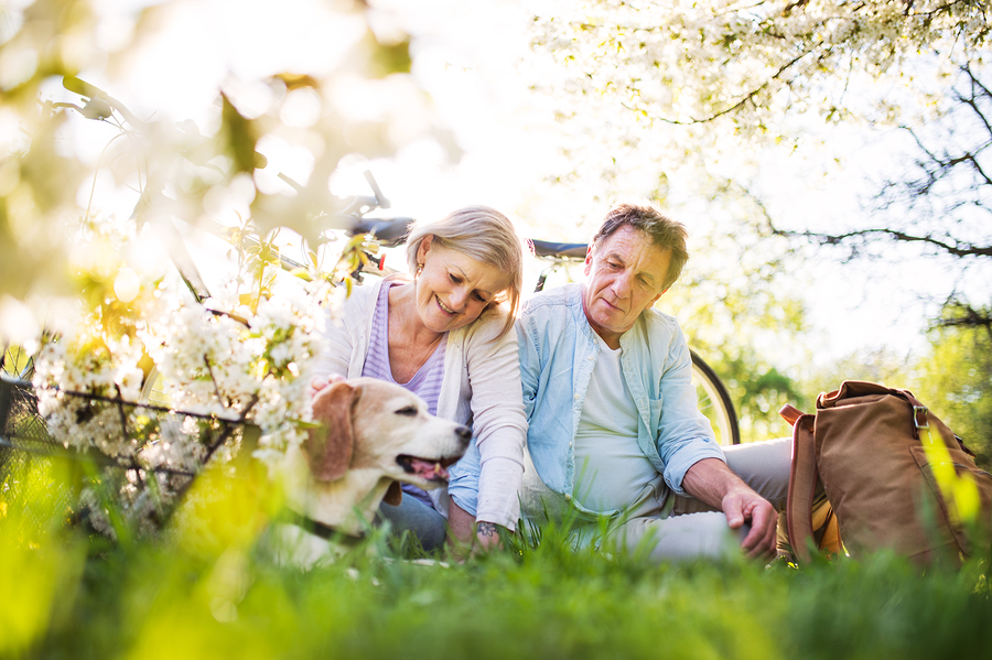 Learn how to protect your hearing aids in spring here.