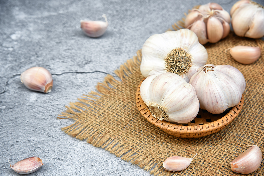 One of the health benefits of garlic is it helps fight illness.