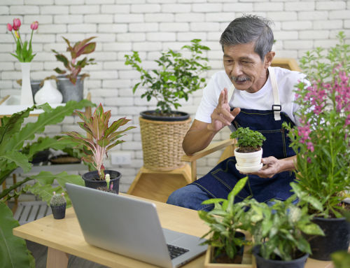 6 Online Activities for Seniors