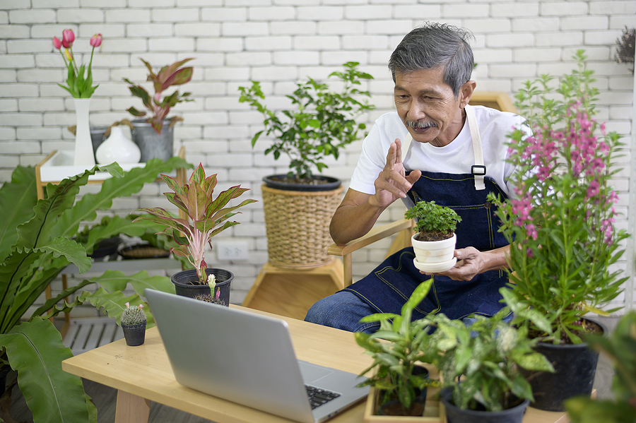 Find six fun and engaging online activities for seniors.