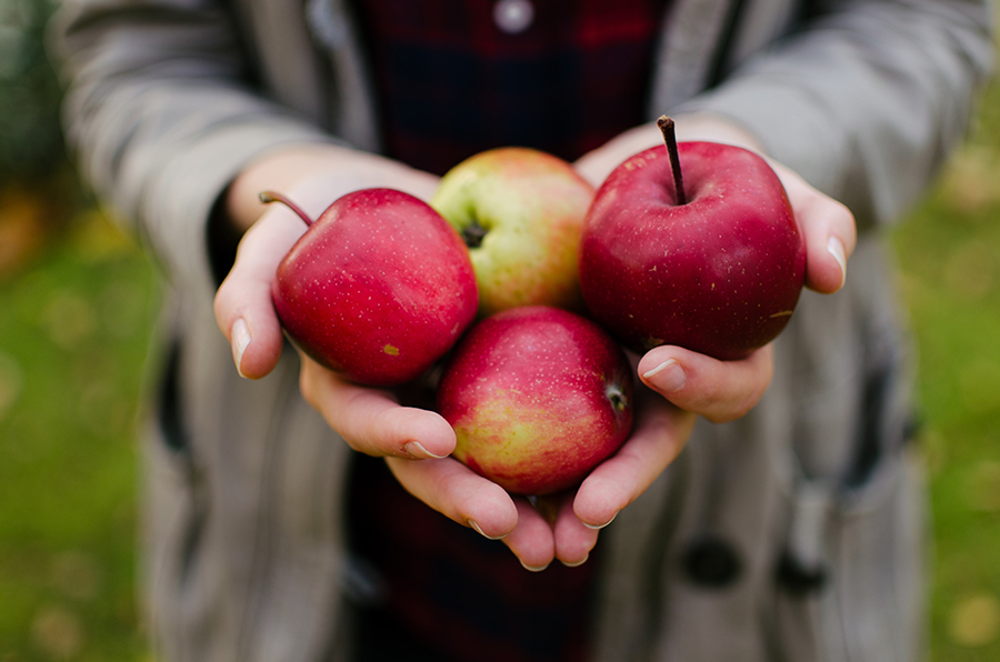 You can use these healthy apple recipes in any meal of the day.